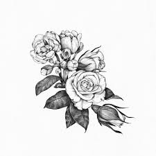 Art Artists On Tumblr Artist Studio Botanical Illustration