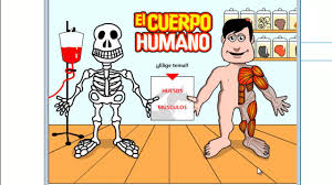 Resultado de imagen de imagenes de huesos del cuerpo humano para niños