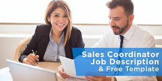 Sales Coordinator Job Description & Free Template