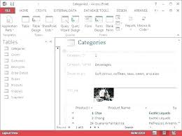 Data Entry Examples Data Entry Template In Excel Forms Examples Top Result