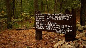 walden thoreau analysis henry david thoreau s walden summary and  book review walden by thoreau scott berkun 800px thoreaus quote near his cabin site walden pond