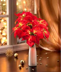 Deko Weihnachtsstern Beleuchtet Jetzt Bei Weltbildde Bestellen