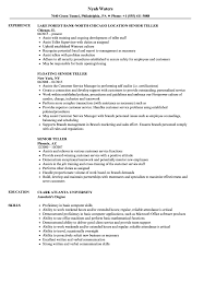 Resume For Teller Position Senior Teller Resume Samples Velvet Jobs