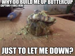 Why do build me up buttercup Just to let me down? Caption 3 goes ... via Relatably.com