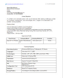 Java Developer Resume Format Carpinteria Rural Friedrich