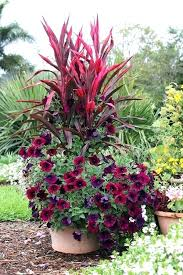 flower pot arrangements outdoor large garden flower pots outdoor large outdoor planter ideas large garden landscaping
