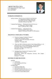 Resume Format Sample For Job Application Job Application Resumes