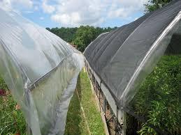 shading crops