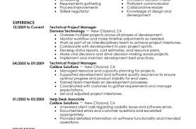Resume Inspiring Resume Samples Examples Technical Project