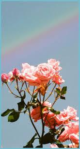 Pastel Rainbow Wallpaper Tumblr ...