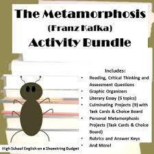 metamorphosis analysis by kafka teaching resources teachers pay   the metamorphosis activity bundle franz kafka word