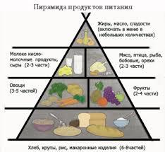 Правильное питание для детей Как организовать правильное питание для детей