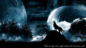 wolf howling wallpaper desktop. Wolves Images Wolf HD Wallpaper And Background Photos With Howling Desktop
