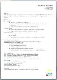 Resume Template Professional Gorgeous Medium To Large Size Of Corporate Flight T Resume Template Basic Job
