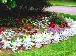 flower garden ideas for beginners home decorating ideas and tips