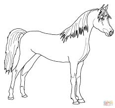 Fresco Disegni Colorati Da Stampare Gratis Cavalli Migliori Pagine