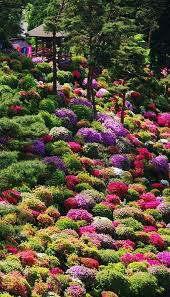 Small Picture 851 best Beautiful Gardens images on Pinterest Gardens