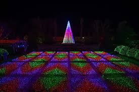 Nc Arboretum Winter Lights 7 1100x734 Clture