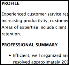 resume profile for customer service resume profile statement for customer service resume ideas