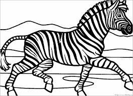 Zebra Color Page Household 21 Animals Printable Coloring Pages