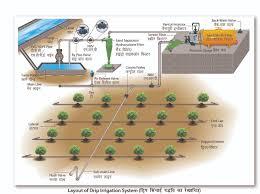 Drip Irrigation System Design And Installation Drip Irrigation Ncpah India
