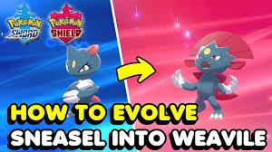 Sneasel Evolution Chart How To Evolve Sneasel Into Weavile In Pokemon Sword Shield