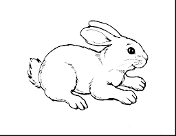 Animals Coloring Pages For Kindergarten Farm Animal Coloring Pages