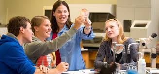 biology assignment help com many faculty biology assignment help write my essay reviews request three or two advice letters from individuals who realize the candidate preferably in an