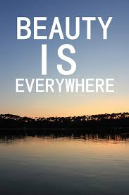 Beauty Is Everywhere Quote