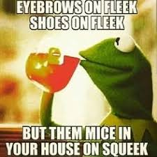 Kermit on Pinterest | Meme, Business and Frogs via Relatably.com