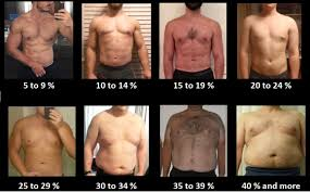 Men S Body Fat Chart How To Estimate Your Body Fat Percentage Bf Ketogains