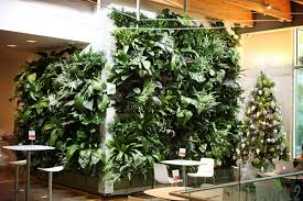 Indoor Tropical Green Wall