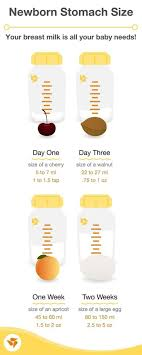 Baby Stomach Capacity Chart Tips For The First Two Weeks Of Breastfeeding Medela