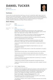 Cfo Resume Samples VisualCV Resume Samples Database Magnificent Cfo Resume