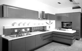 splendid kitchen furniture design ideas. Splendid Kitchen Furniture Special Design Italian Ideas Pictures Rta Cabinets Cabinet Corner