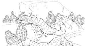 6 desert plants coloring pages desert animals coloring pages az free printable coloring pages