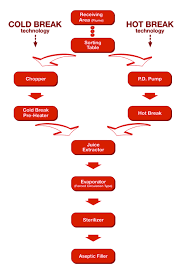 Tomato Sauce Production Flow Chart 08 Tomato Paste Processing Tomato Jos West African