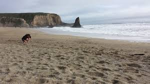 view of a sandy beach with waves and rocks in davenport beach california