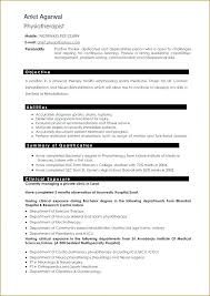 Resume Writers Chicago Beautiful Federal Resume Writers Reviews Magnificent Resume Writers Reviews