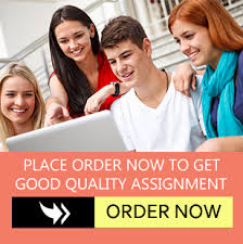 best essay writing help essay writing experts have any queries