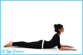 bhujangasana pose yoga all yoga positions com bhujangasana pose yoga 2 jpg