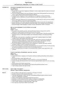 Ecommerce Resume Sample Ecommerce Retail Resume Samples Velvet Jobs 18