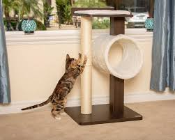 Cat furniture modern Contemporary Petfusion Modern Cat Tree House Tall Scratching Post Oaklandewvcom The 11 Best Cat Trees And Kitty Condos 2018