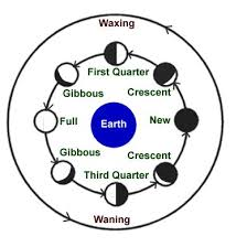 Phases Of The Moon Chart For Kids Kids Science Phases Of The Moon