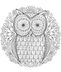Owl Coloring Pages For Adults Best Of For