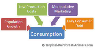 how to reduce pollution bull environmental pollution personal consumption pollution population growth low production costs manipulative marketing how to reduce pollution