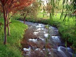 Охрана окружающей среды в Туркменистане только факты Новости  Охрана окружающей среды в Туркменистане только факты