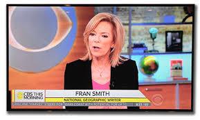Fran Smith