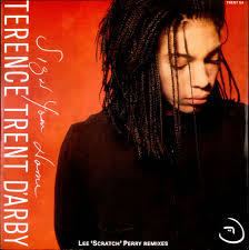 "Terence Trent D'arby Sign Your Name - Lee Scratch Perry Remixes UK 10"" Vinyl Record TRENTG4 Sign ... - Terence-Trent-DArby-Sign-Your-Name---73332"