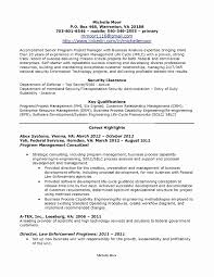 Customer Success Manager Resume Best Of Pretty Program Manager